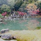 紅葉がきれいな京都!